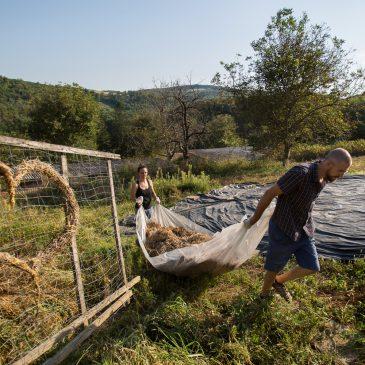 Hogyan kel életre a természet szívében egy közösségi központ?